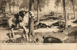 Battlefield Showing Dead and Wounded, White Horse
