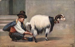 Young Man Squatting Behind Goat, Squeezing Milk Into Cup