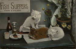 Sign: Fish Suppers from 8 O'Clock - Three Cats Waiting