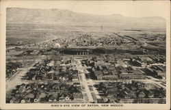 Bird's-Eye View of Raton, New Mexico Postcard