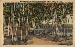 White Birches, State Camping Grounds