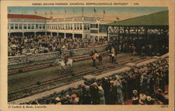 Horses Leaving Paddock at Churchill Downs