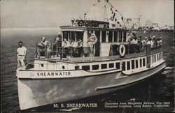 The M. B. Shearwater Off the California Coast