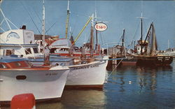 Fishing Boats at Montauk