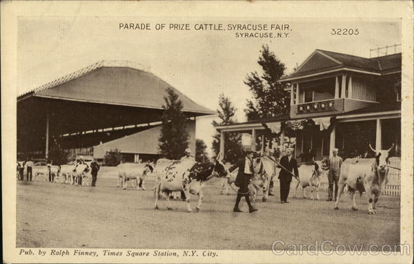 Parade of Prize Cattle, Syracuse Fair New York