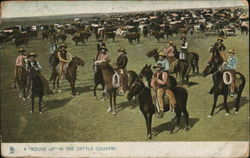 "A ""Round Up"" in Cattle Country"