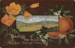 Greetings from the Land of Sunshine - Fruit and Flowers