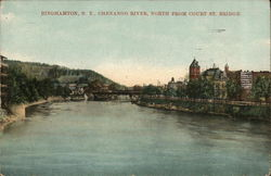 Binghamton, N.Y., Chenango River, North from Court St. Bridge