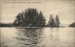 Old Tree Island, Kezar lake