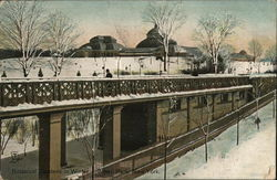 Botanical Gardens in Winter, Bronx Park, New York