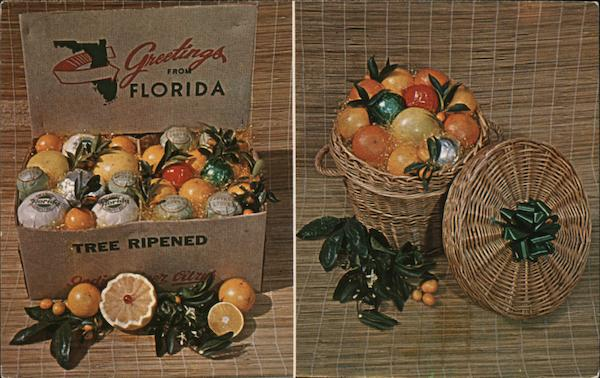 Greetings from Florida Tree Ripened Oranges Advertising