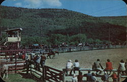 Rodeo at Dude Ranch