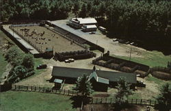 Painted Pony Ranch