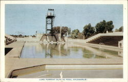 Lord Forrest Olympic Pool