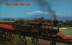 Maui's Sugar Cane Train