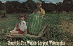 Home of the World's Largest Watermelon