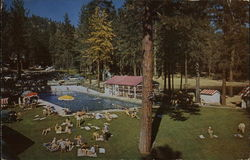 Feather River Inn - Swimming Pool and Trout Pond