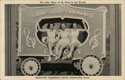 Gainesville Community Circus