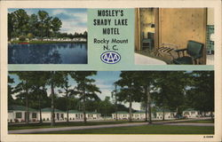 Mosley's Shady Lake Motel