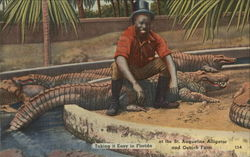 Take it Easy in Florida at the St. Augustine Alligator and Ostrich Farm