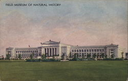 Field Museum of Natural History Postcard