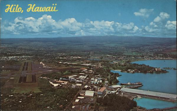 Aerial View Hilo Hawaii