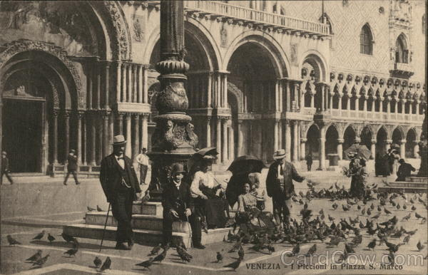 Venezia - I Piccioni in Piazza S. Marco
