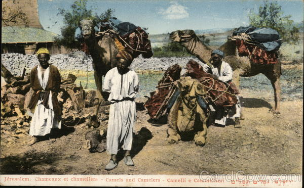 Jerusalem - Camels and Camelers Israel Middle East