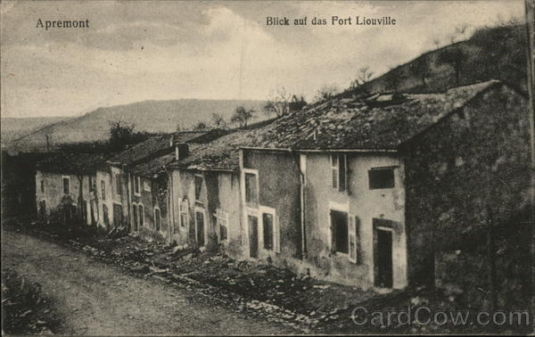 Fort Liouville