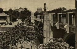 A Glimpse from the City Bridge Postcard