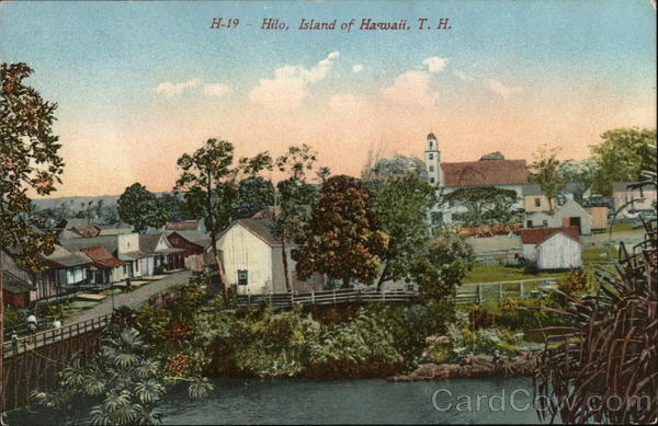 View of Town Hilo Hawaii