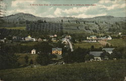 A Bird's Eye View of Callicoon Center, Altitude 2200 Feet