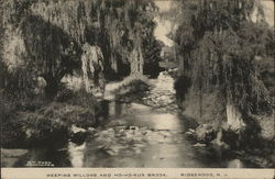 Weeping Willows and Ho-Ho-Kus Brook