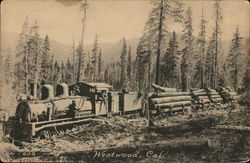 Train Carrying Logs Through Wooded Area