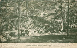 Eastman Springs - Benches, Bridge and Trees