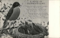 "Bird in Nest with Babies - ""A Song of Mother's Love"""