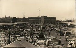 Large Outdoor Marketplace with Trucks and Bushel Baskets