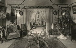 Room with Decorated Tree, Chairs and Plants
