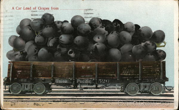 A Car Load of Grapes Fro Union Pacific Exaggeration