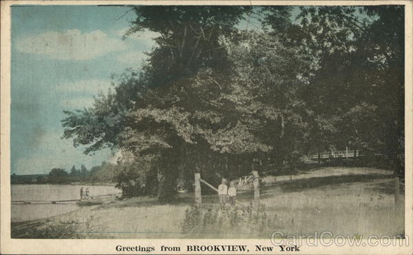 Greetings From Brookview, NY New York