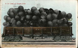 A Car Load of Grapes Fro Union Pacific