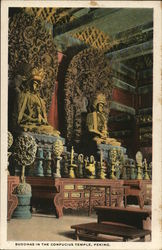 Buddhas in the Confucius Temple Postcard