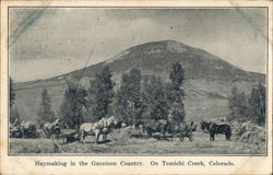 Haymaking in the Gunnison Country On Tomichi Creek