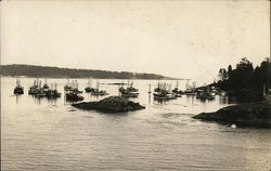 Boats at Anchor