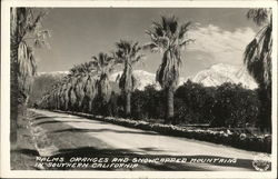 Palms, Oranges and Snowcapped Mountains