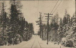 Railway Visible With Snow-Covered Pine Trees on Either Side