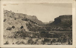 Sagi Canyon