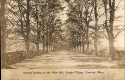 Avenue Leading to the Holy Hill, Shaker Village Postcard
