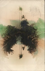 Tall Palm Trees Reflected in Water, Tinted