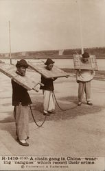 "A Chain Gang in China - Wearing ""Cangues"" Which Record Their Crime Postcard"